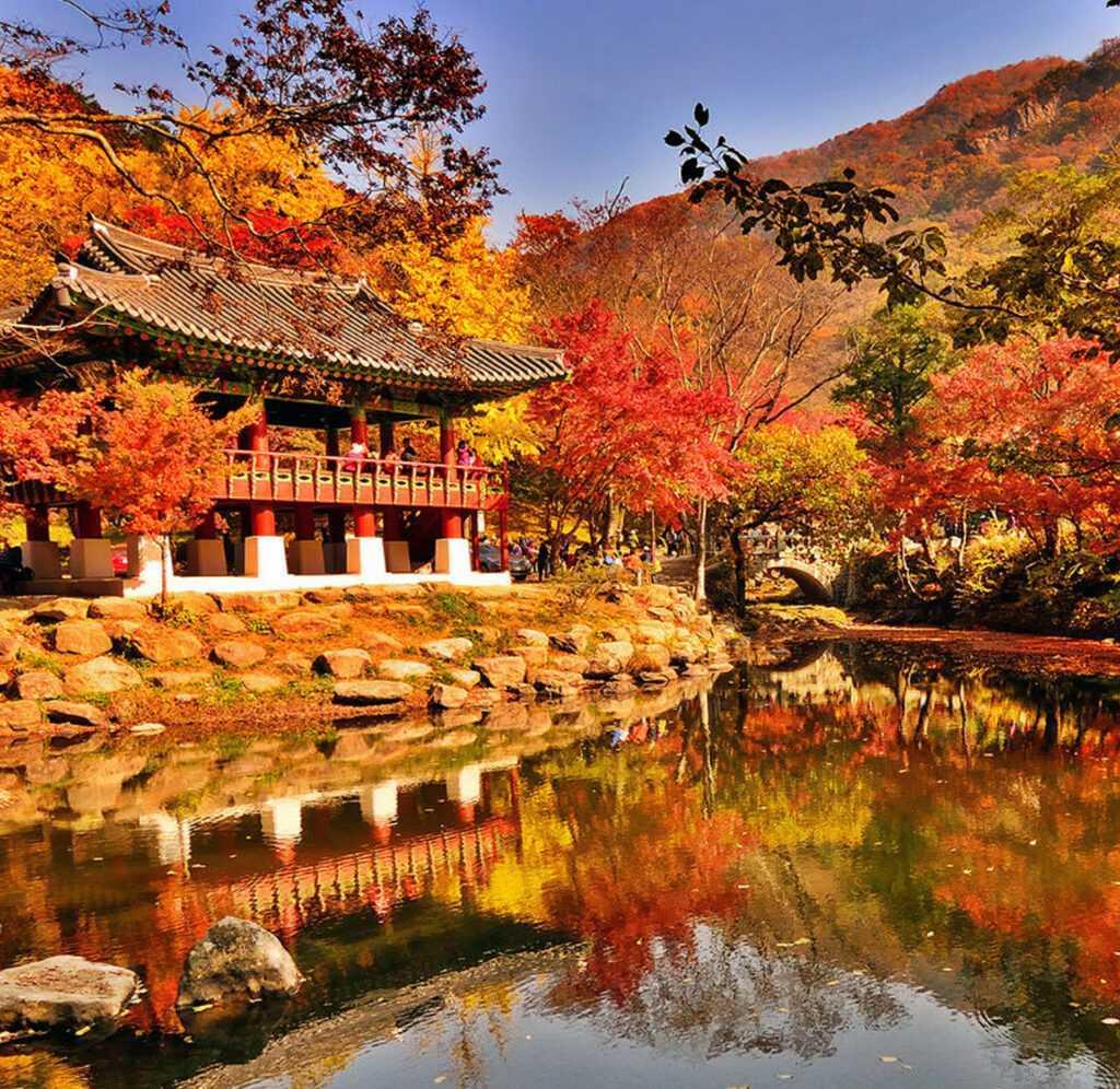 Виза в Корею: разница между Северной и Южной, оформление и особенности