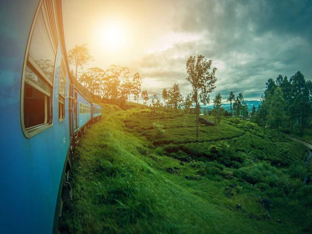 Нужна ли виза на Шри-Ланку и как её получить
